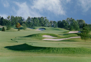 Heather Glen Homes For Sale With Golf Course View