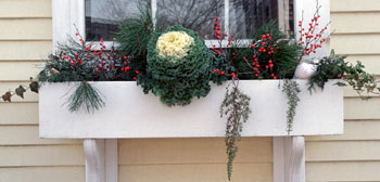 Ideas for Winter Curb Appeal