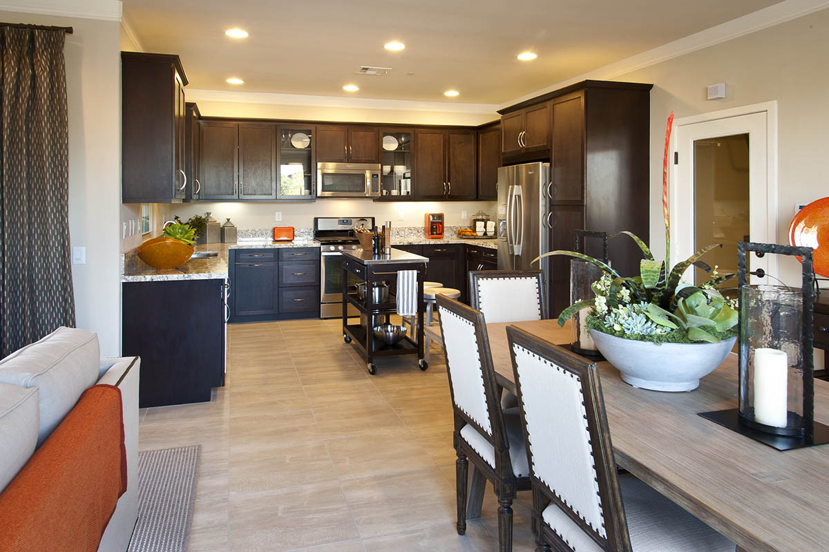 Casita at Colony Park New Homes - Great Room